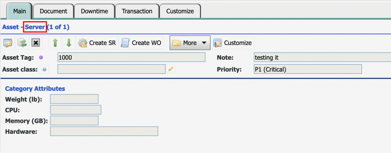 How to Customize Asset Forms with Class (Categorization)